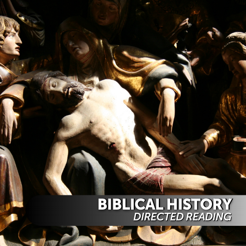 Bible and Ethics Directed Reading