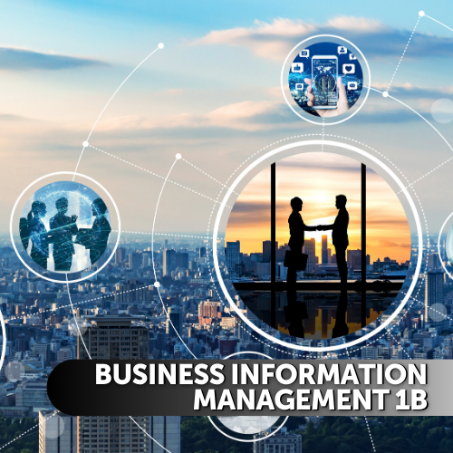 Business Information Management 1b