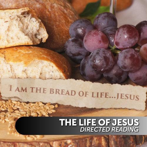 The Life of Jesus Directed Reading