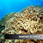 MarineScience