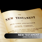 New Testament Directed Reading