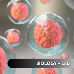 Biology + Lab