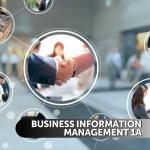 Business Information Management 1a