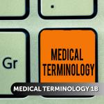 Medical Terminology 1b