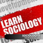 Sociology II: Your Social Life